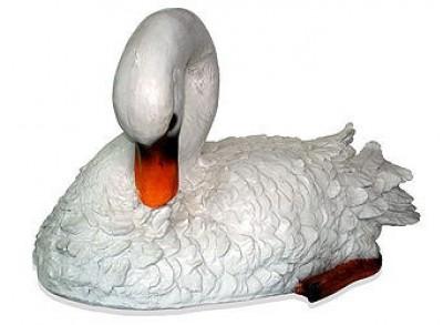 Лебедь (3.63)