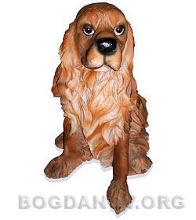 Собака спаниель (3.84)